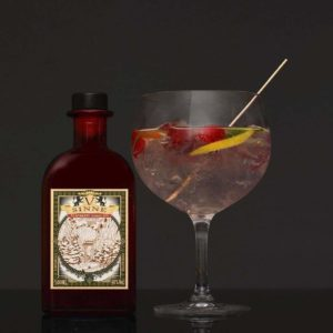 V-SINNE Raspberry Magic Tonic