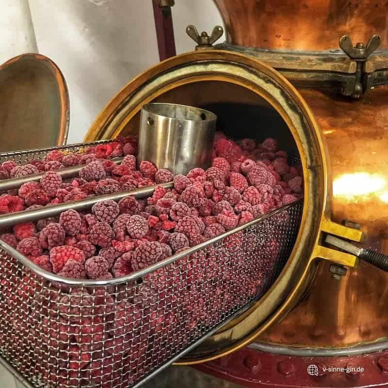V-SINNE Raspberry Magic Geistkorb Himbeeren