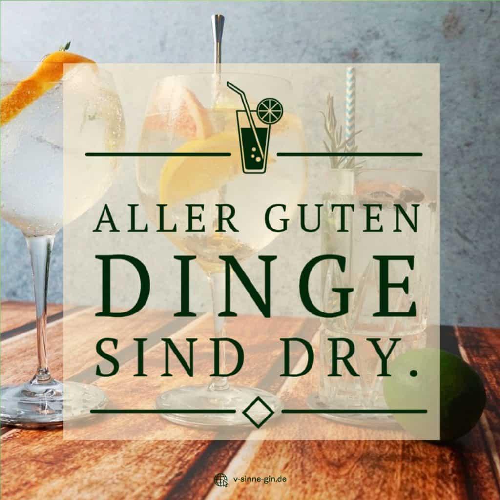 Gin Spruch: Alle guten Dinge sind Dry.