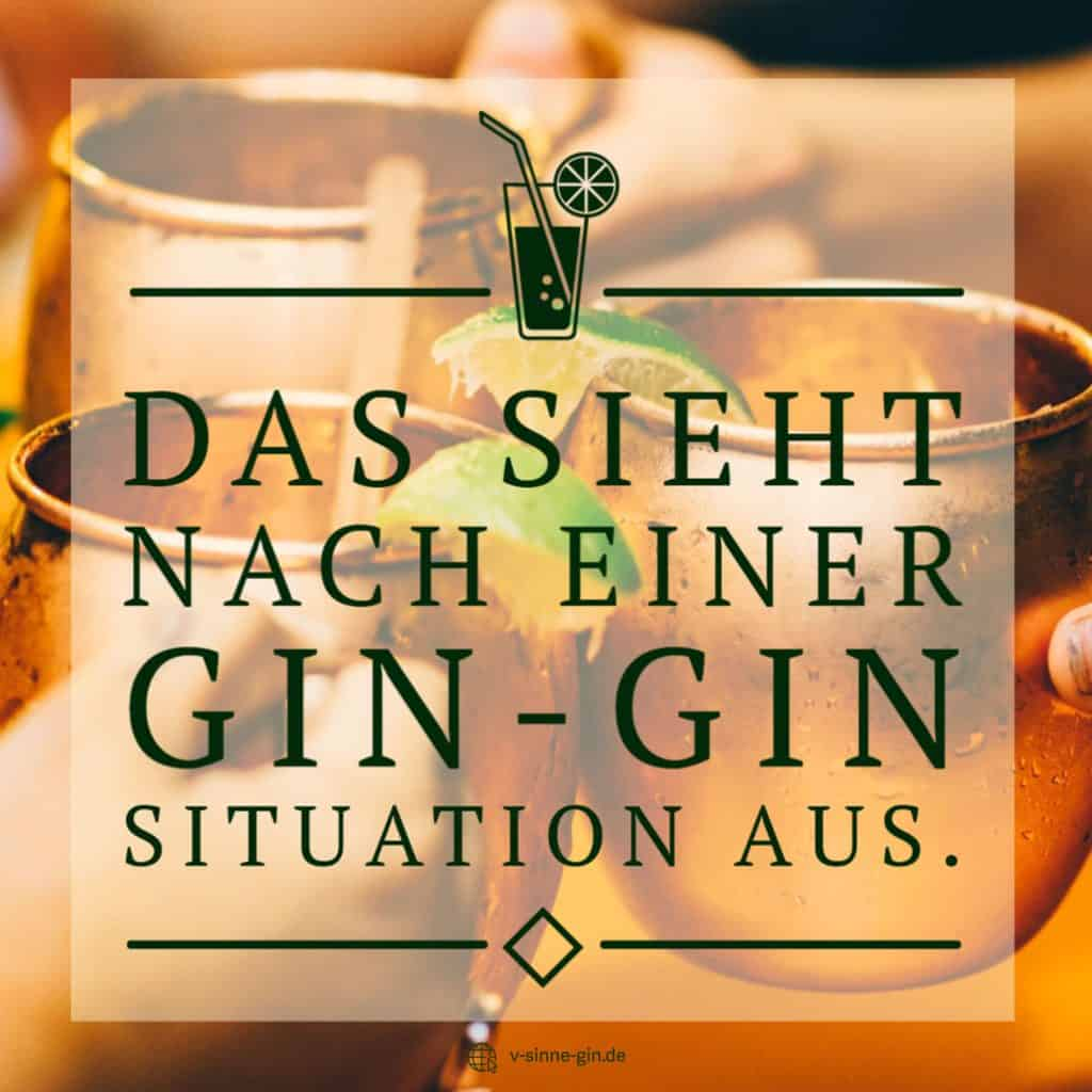 Gin Spruch: Das sieht nach einer Gin-Gin Situation aus,