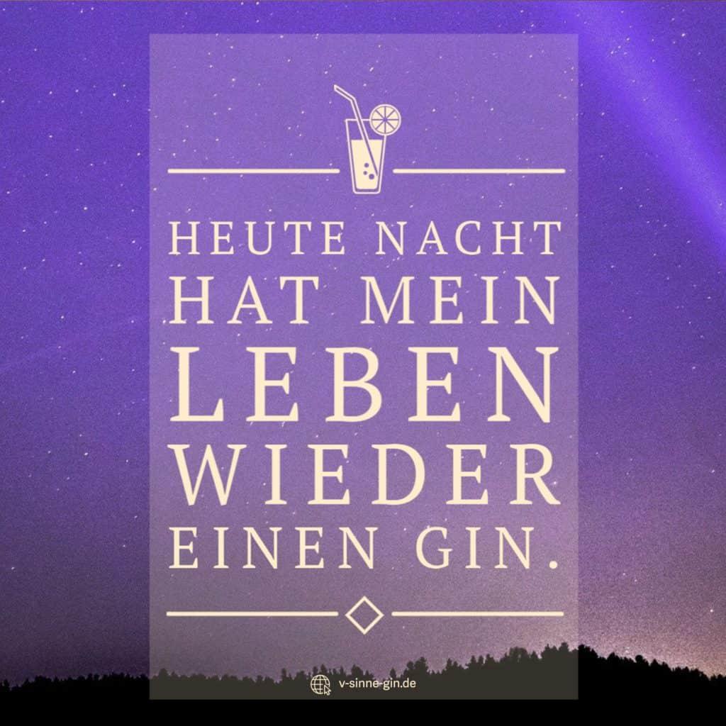 Gin Spruch: Heute Nacht hat mein Leben wieder einen Gin.